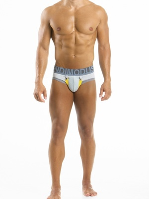 MODUS VIVENDI Bear Boost Brief Grey