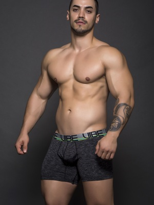 Andrew Christian Vibe Sports & Workout Tagless Boxer Asphalt